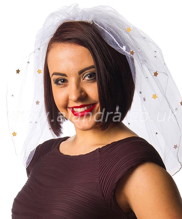 Hen Night Veil with Gold & Diamante Decoration